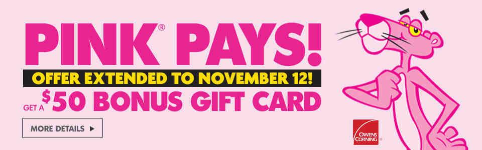 Pink Pays Extended Nov-12 Banner