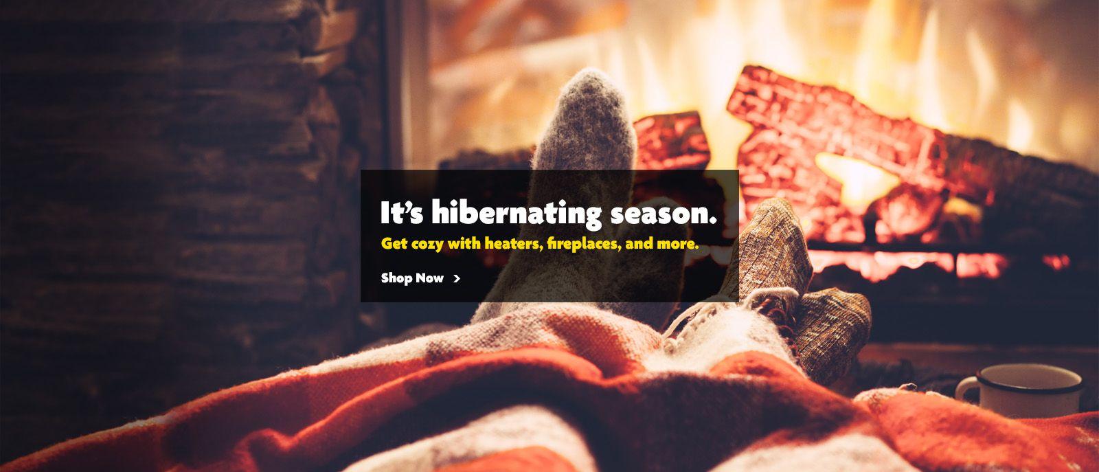2019 Winter Hibernate Season Slider