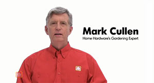 Image of Mark Cullen and his name