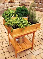 Herb Planter Spring DIY